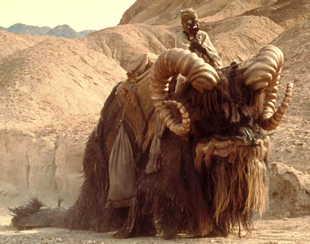 sand people animal